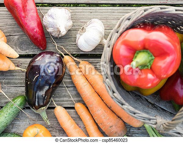 Freshly picked organic home-grown vegetables - csp85460023
