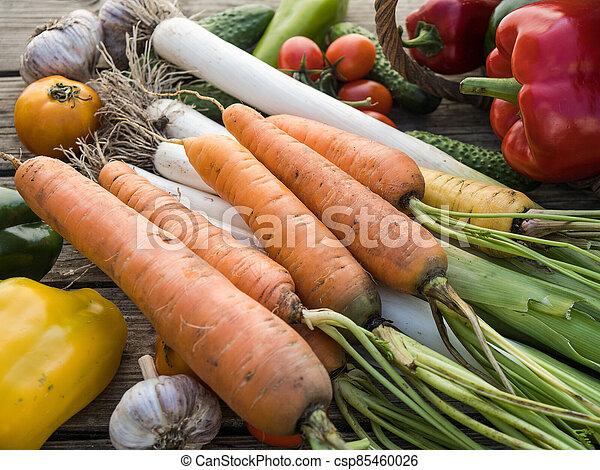 Freshly picked organic home-grown vegetables - csp85460026