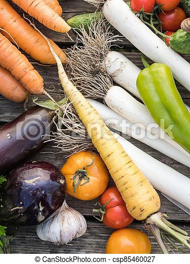 Freshly picked organic home-grown vegetables - csp85460027