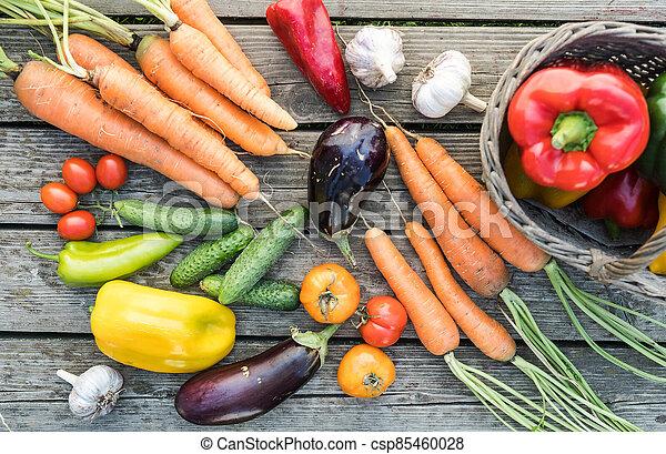 Freshly picked organic home-grown vegetables - csp85460028