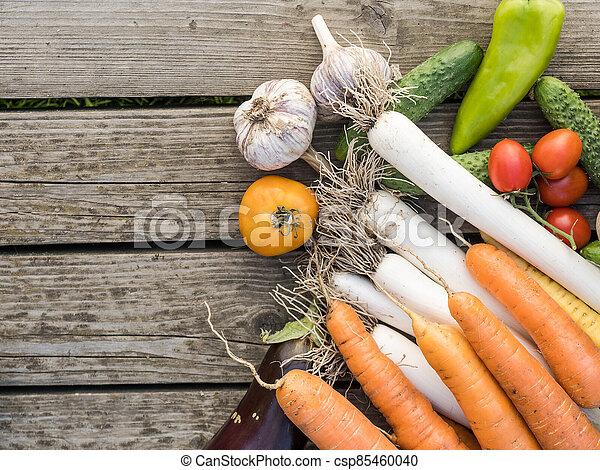Freshly picked organic home-grown vegetables - csp85460040