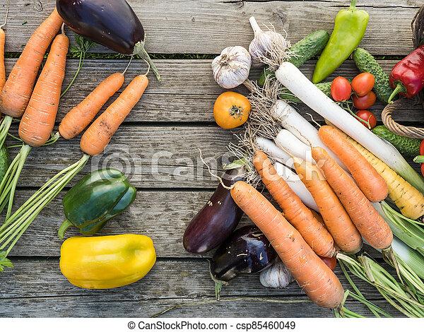 Freshly picked organic home-grown vegetables - csp85460049