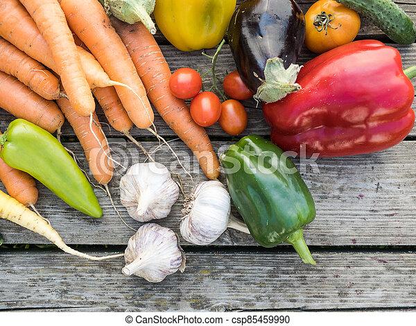 Freshly picked organic home-grown vegetables - csp85459990