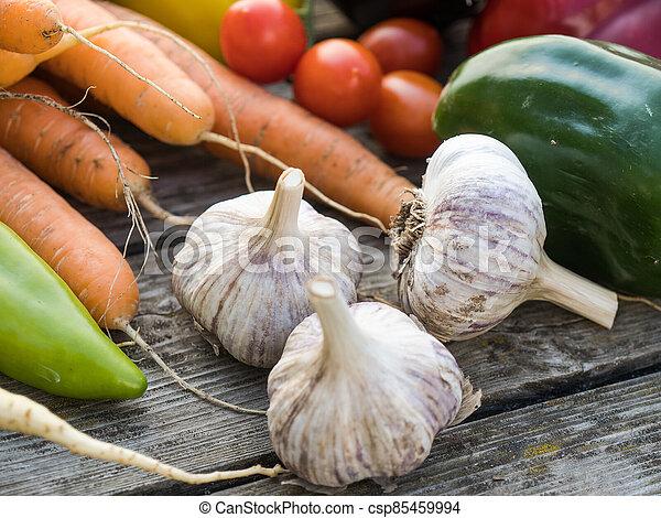 Freshly picked organic home-grown vegetables - csp85459994