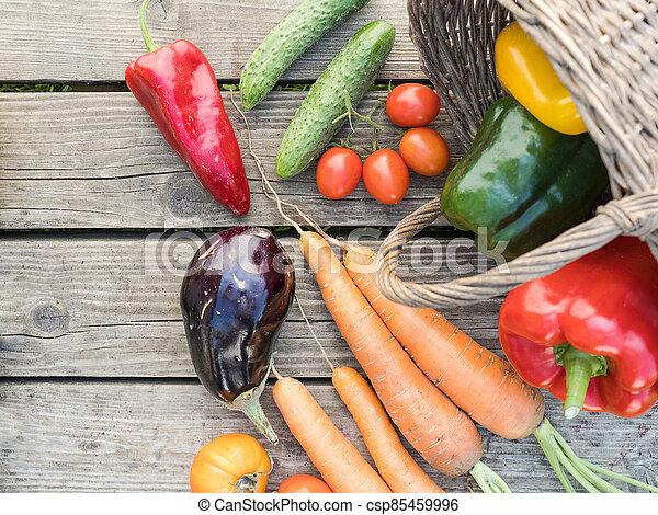 Freshly picked organic home-grown vegetables - csp85459996