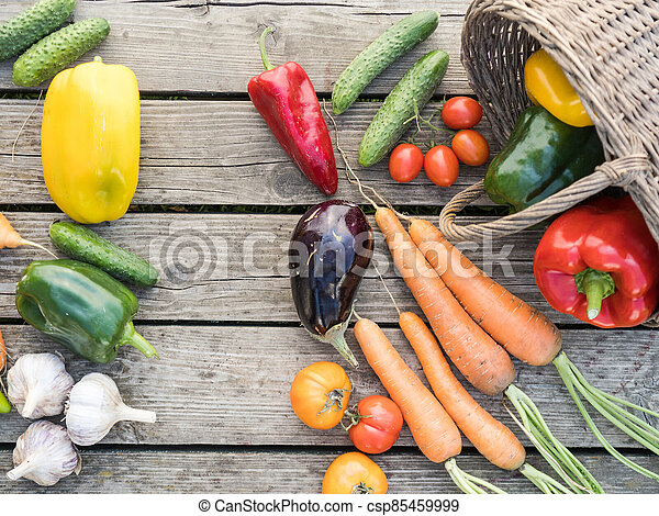 Freshly picked organic home-grown vegetables - csp85459999
