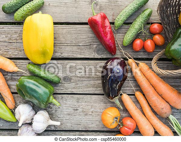 Freshly picked organic home-grown vegetables - csp85460000
