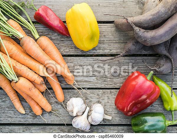Freshly picked organic home-grown vegetables - csp85460009
