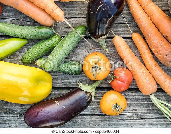 Freshly picked organic home-grown vegetables - csp85460034