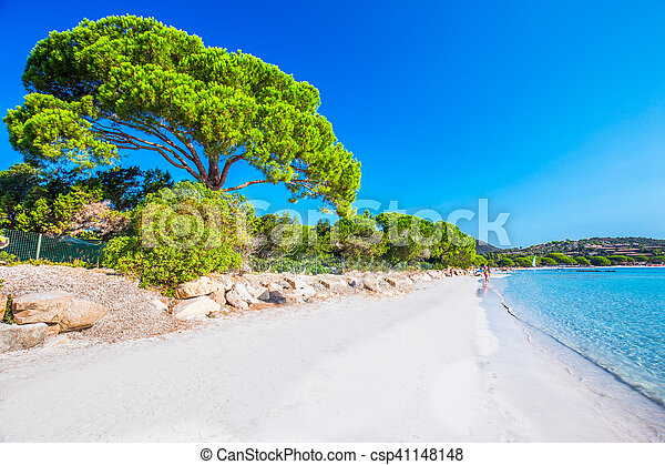 Fri Korsika Fura Frankrike Trad Azur Europe Strand Sandig Vatten Fri Korsika Fura Frankrike Giuliana Trad