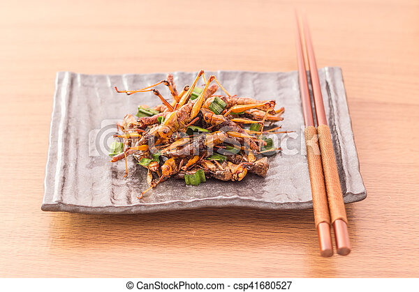 Fried insects - csp41680527
