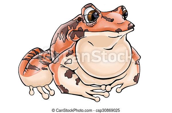 Friendly Frog - csp30869025