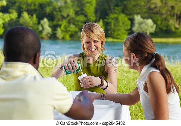 friends picknicking - csp2045432