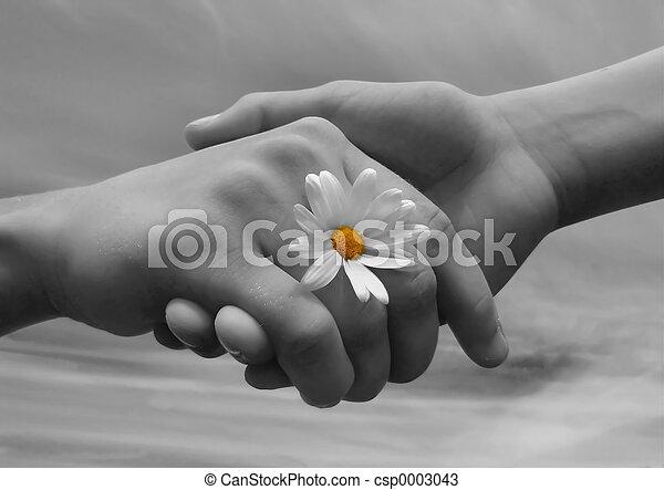 Friends2 - csp0003043