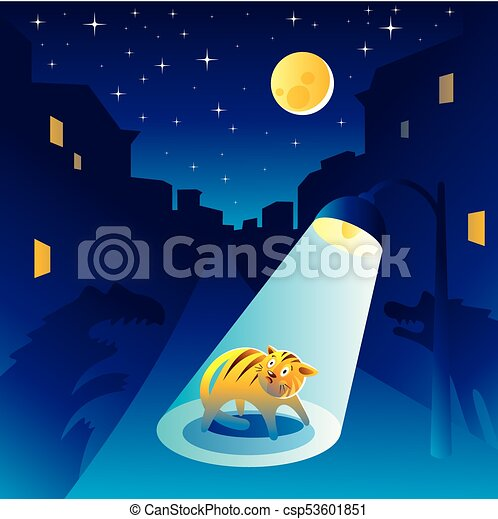 Frightened kitten at the night of the city - csp53601851