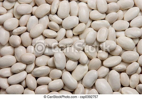 Frijoles blancos - csp0392757