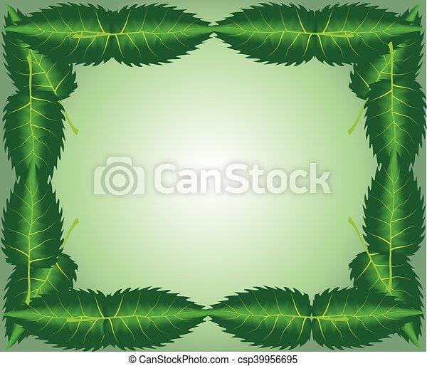 Zweig mit frischen grünen Blättern - csp39956695