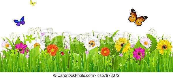 friss, táj, természet - csp7973072