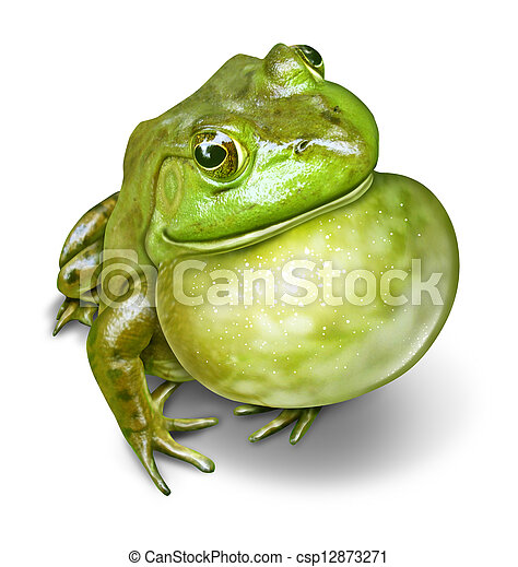 Frog Inflated Throat - csp12873271