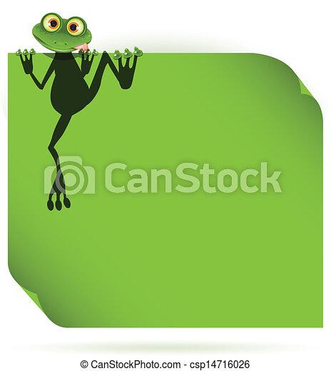 frog on a green leaf - csp14716026
