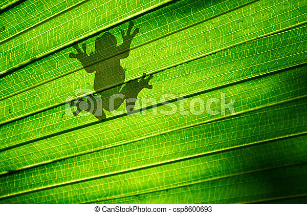 Frog Silhouette - csp8600693