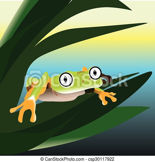Frog sitting on a leaf in the swamp - csp30117922