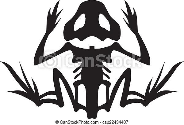 Frog Skeleton - csp22434407