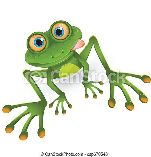 frog - csp6705481