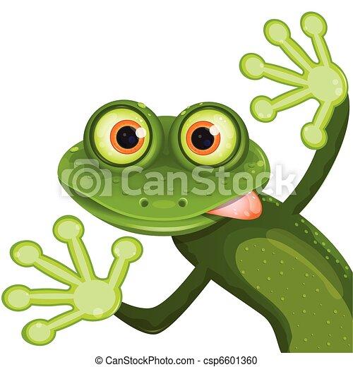 frog - csp6601360