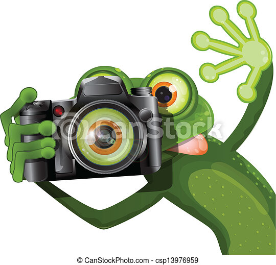frog with a camera - csp13976959