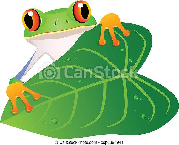 frog with leaf vector illustration of frog with leaf rh canstockphoto com vectorfog vectorfog h200sf
