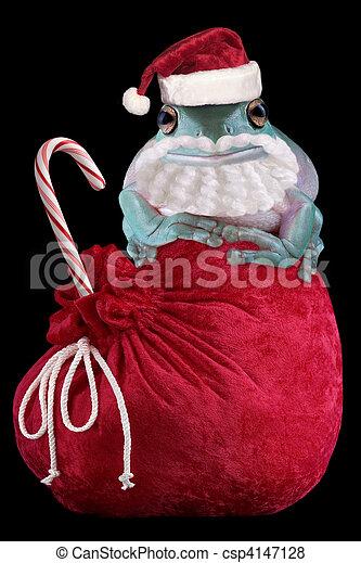 Froggy Santa - csp4147128