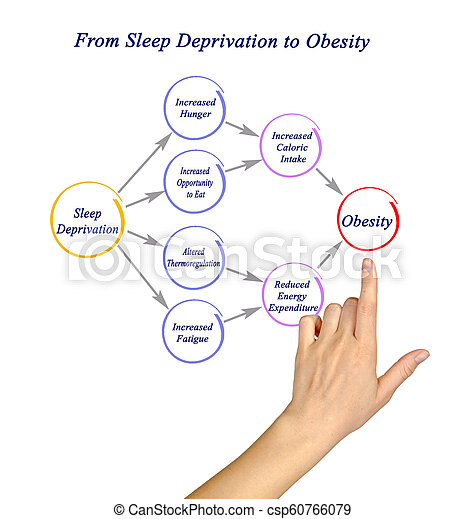 From Sleep Deprivation To Obesity