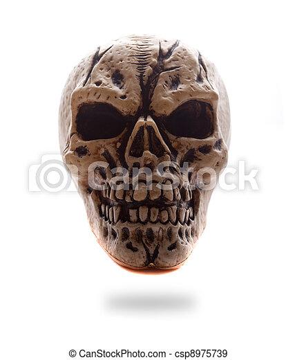Frontal, menschlicher schädel, ansicht. Auge, totenschädel, frontal ...