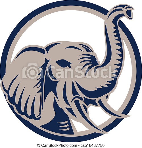 fronte, testa, retro, elefante - csp18487750