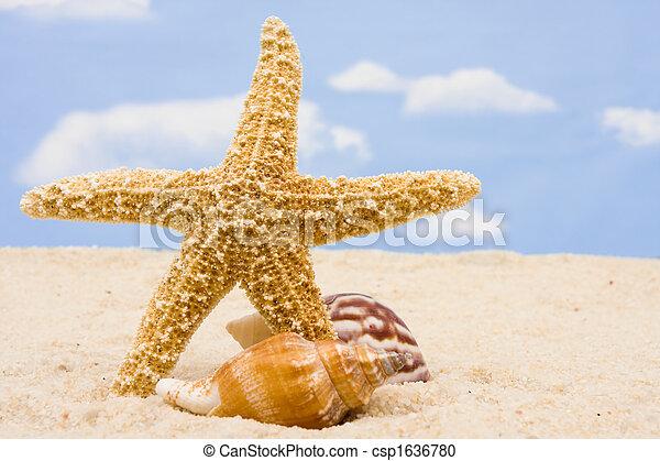 La frontera de Starfish - csp1636780