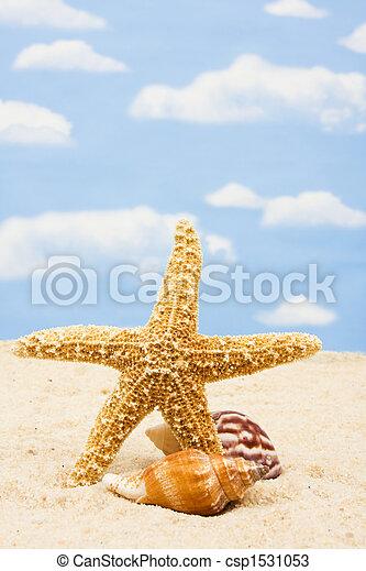 La frontera de Starfish - csp1531053