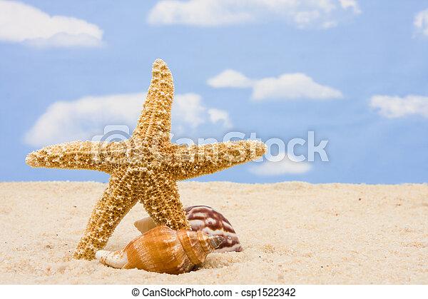 La frontera de Starfish - csp1522342