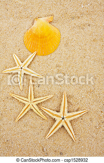 La frontera de Starfish - csp1528932