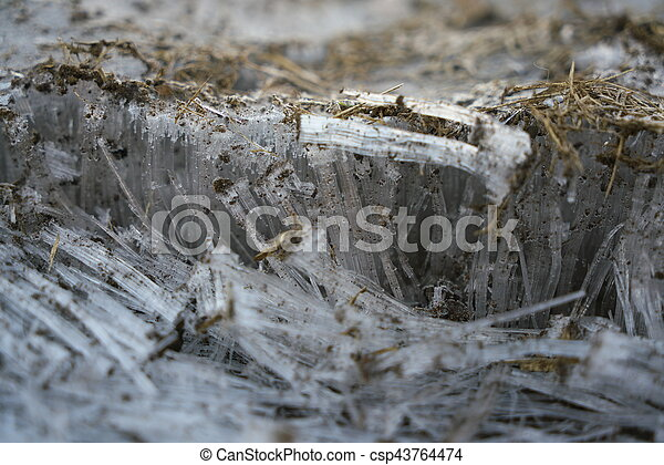 Frost columns or ice needles - csp43764474
