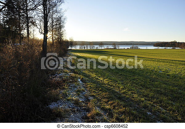 Frost on a Green Field - csp6608452
