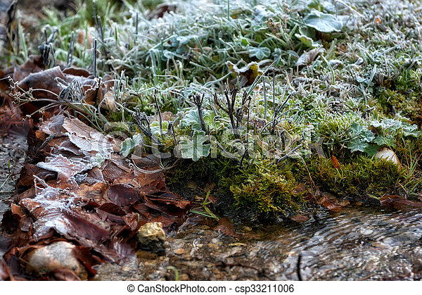 frost the water's edge in a winter landscape, low key, dark background, spot lighting, and rich Old Masters - csp33211006