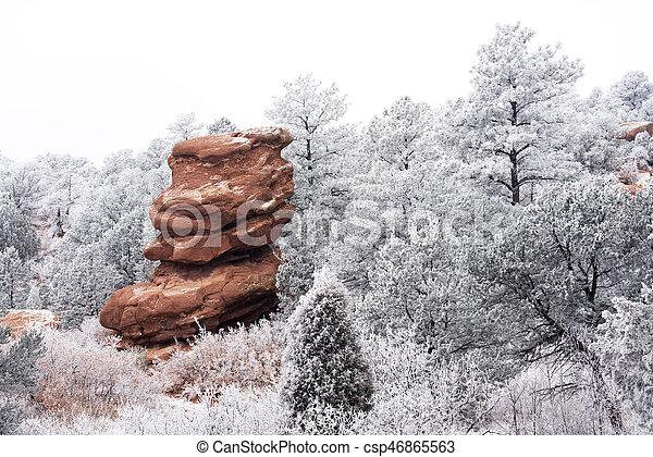 Frosty Garden Of The Gods