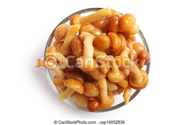 Frozen mushrooms in a glass bowl, white background - csp14052836