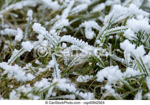 Frozen - csp40842924