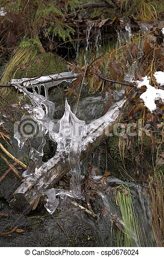 Frozen Twig - csp0676024