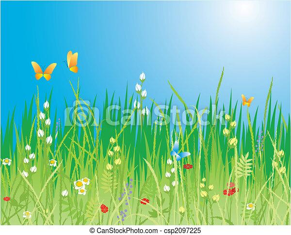&, fruehjahr, -, blumen, hintergrund., vlinders, vektor, gras - csp2097225
