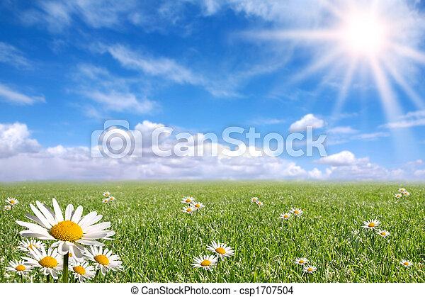 fruehjahr, draußen, glücklich, hell, tag - csp1707504