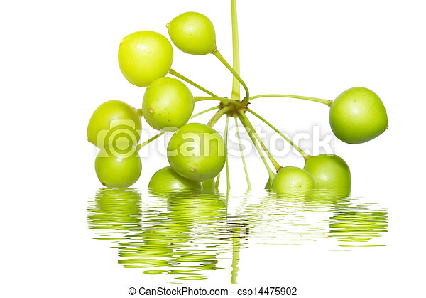 fruit on the water - csp14475902