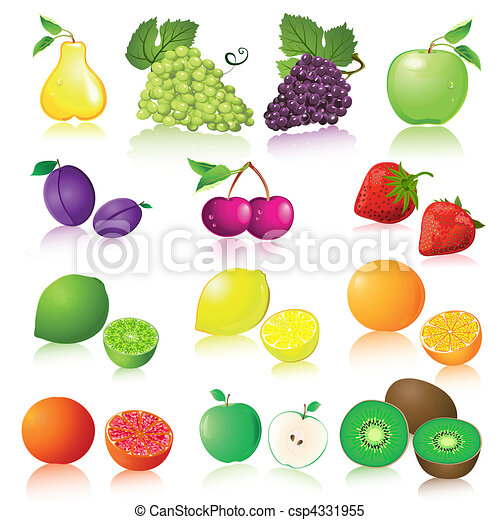 Fruit set - csp4331955